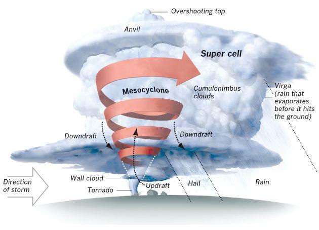 Pleasant Diagram Of Tornado Http Wwwterraelectriccom Tornado Tornado Wiring Wiring Cloud Orsalboapumohammedshrineorg