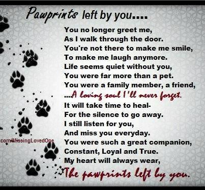 Groovy Paw Prints Poem Email This Blogthis Share To Twitter Share To Wiring Cloud Grayisramohammedshrineorg