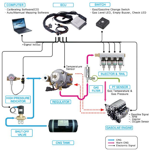 Cng Kit Wiring Diagram
