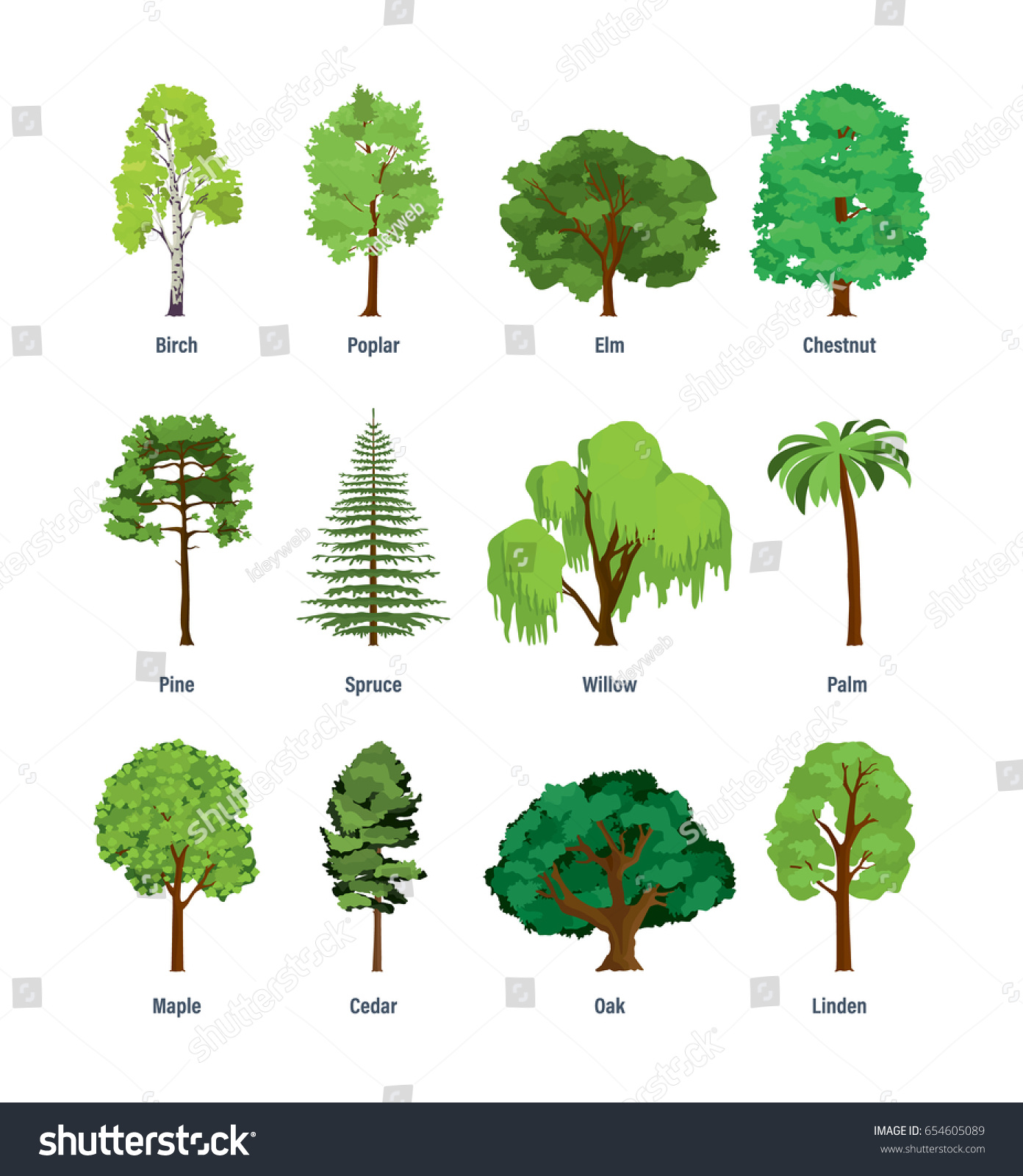Elm Tree Diagram   Diagram & Symbol Wiring symbol penny   symbol ...