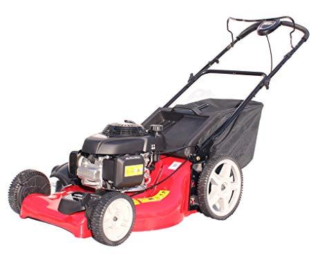 Strange Honda Gcv160 Petrol Lawn Mower Mulching Catcher 53 Cm Vario Drive Wiring Cloud Genionhyedimohammedshrineorg