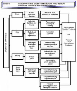 FC_1677] Contoh Diagram Hutan Mangrove Wiring DiagramCapem Orsal Cran Olyti Etic Gresi Rous Xtern Stic Effl Lave Trofu Funi Sarc  Exxlu Umng Mohammedshrine Librar Wiring 101
