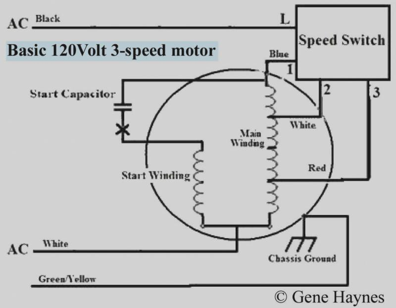 2 Speed Ac Motor Wiring Wiring Diagram Bound Guide Bound Guide Pmov2019 It
