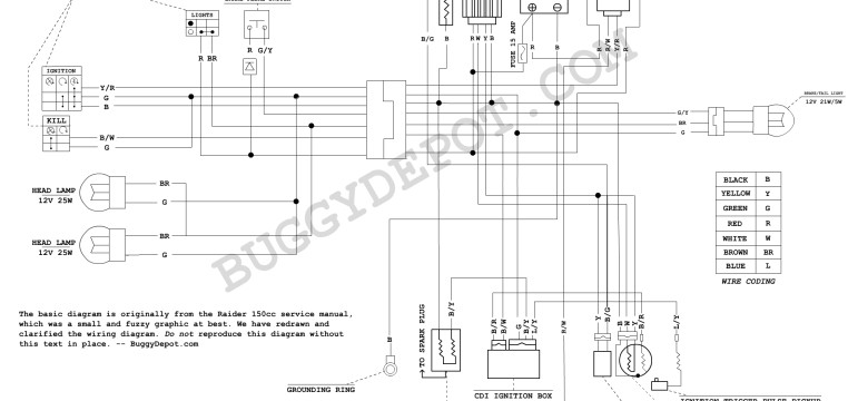 Awesome Dazon Raider Classic Wiring Diagram Buggy Depot Technical Center Wiring Cloud Licukshollocom