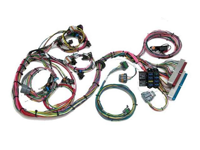 Awesome Painless 60522 Gm Ls1 Wiring Harness Std Length W Throttle By Wire Wiring Cloud Domeilariaidewilluminateatxorg