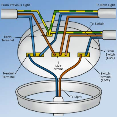Amazing Wiring A Ceiling Rose How To Wire A Ceiling Rose Correctly Wiring Cloud Picalendutblikvittorg