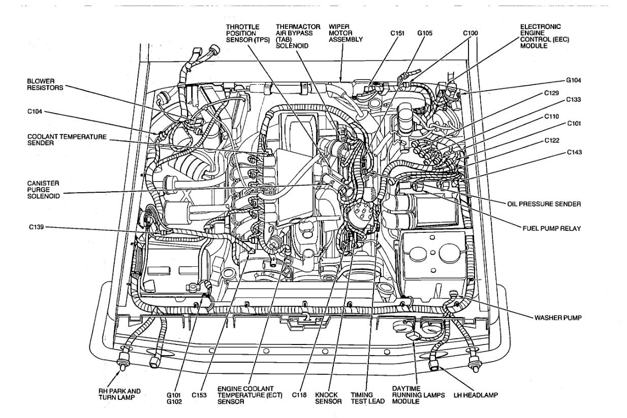 Strange Ford Fuel Pump Relay Wiring Diagram Basic Electronics Wiring Diagram Wiring Cloud Licukosporaidewilluminateatxorg