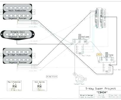 Pleasing Seymour Duncan Wiring 5 Way Switch 1 Single Coil Wiring Diagram Wiring Cloud Ostrrenstrafr09Org