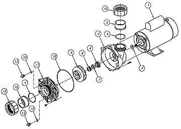Waterway Spa Pump Wiring Diagram from static-cdn.imageservice.cloud