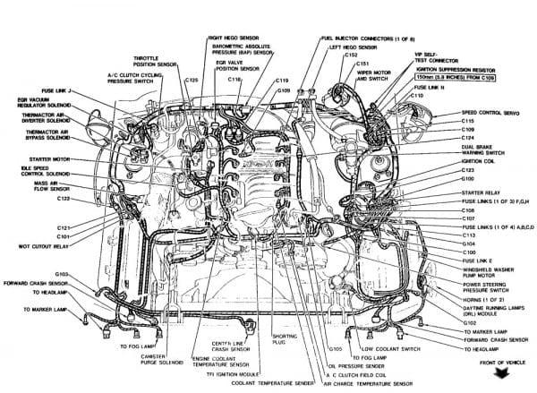2001 Ford Mustang Gt Engine Diagram Wiring Diagrams Database Minimize Minimize Urbani Lacertosa It