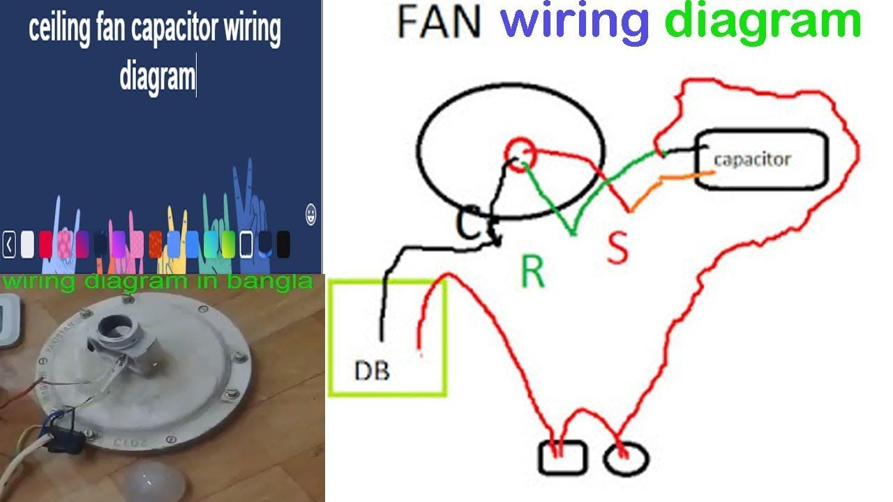 Amazing Ceiling Fan Capacitor Wiring Diagram In Bangla Maintenance Work In Wiring Cloud Faunaidewilluminateatxorg